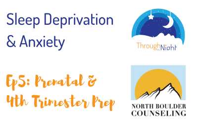 Vlog Series: Prenatal & 4th Trimester Prep (Ep. 5)
